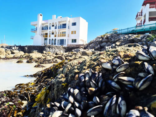 Raaswater Langebaan's_superb_location
